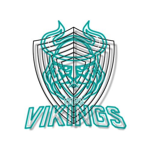 NOGLOWBELONG-Tribe-Badges-New-2017_York VIKINGS.png